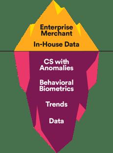 Enterprise Merchant and In-House Data, bottom CS with Anomalies, Behavioral Biometrics, Data, Trends