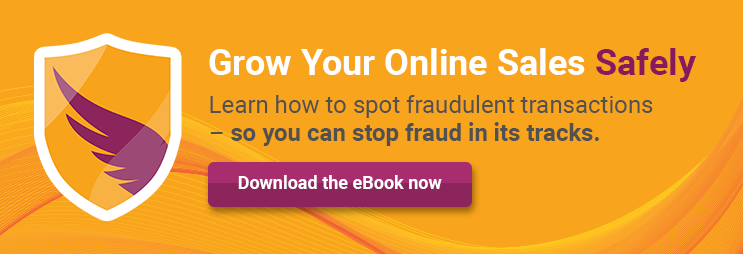 Download Credit Card Fraud eBook