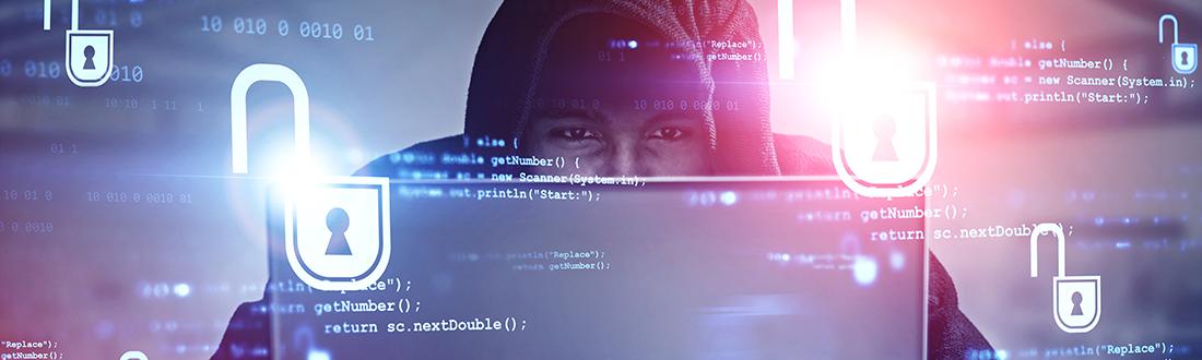 criminal braking internet security