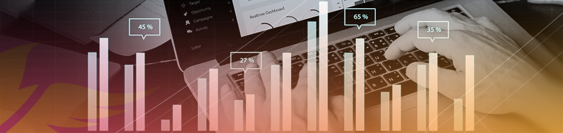 Ecommerce Fraud Statistics
