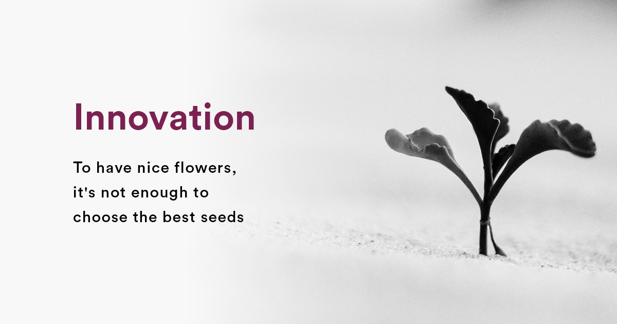 Innovation: To have nice flowers, it's not enough to choose the best seeds